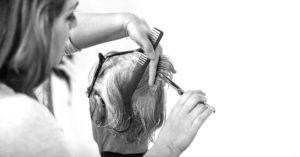 stylist cutting hair